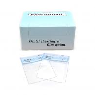 Film Mount (접착식) #비닐