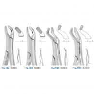 [H.ZEPF] Extracting Forceps #상악대구치