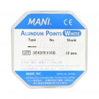 Alundum points (white) (FG)