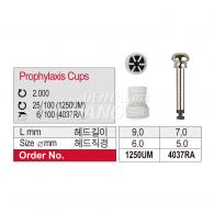 Prophylaxis Cups