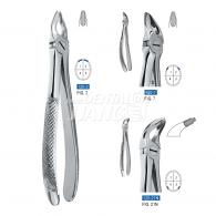 Dental Forcep 120