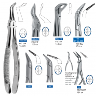 Root Forcep 100,164,166,168,168,175