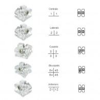 Shine M Clear Resin Bracket 5x5 Set