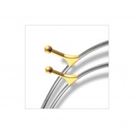 Stainless Steel Posted Archwires