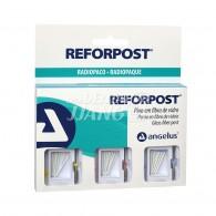 Reforpost Glass Fiber Post kit