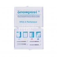SnowPost Kit