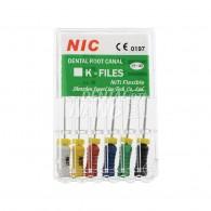 NIC K-File 21mm