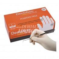 DentiAnn Premium Glove Powder Free