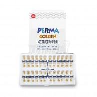 [영구치용] Perma Golden Crown Kit